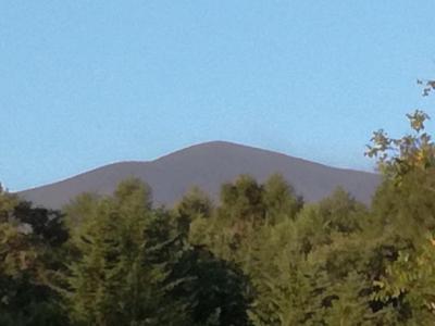 今年も、家族で軽井沢に避暑に行ってきました。