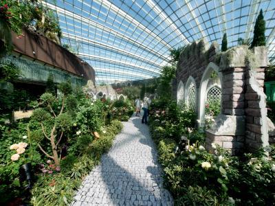 2019.6シンガポール一人旅13-セントーサ島のマーライオン,Gardens by the Bay,フラワードーム
