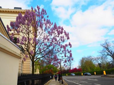 憧れ満喫!花咲く4月のロンドン、はじめての海外一人旅①準備~出発