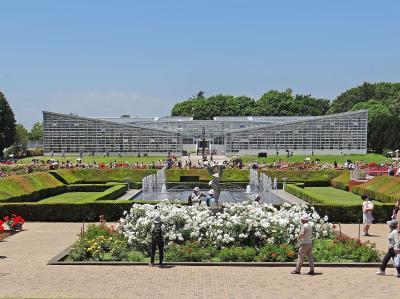 花の調布 神代植物公園 大温室