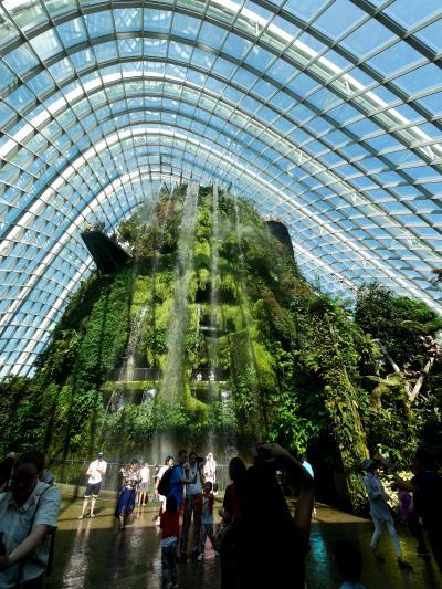 2019.6シンガポール一人旅14-Cloud Forest