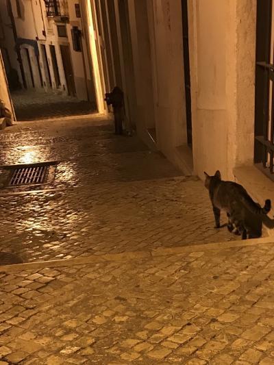 はじめての海外ひとり旅~ポルトガル~リスボン1