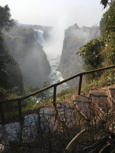 ヴィクトリアの滝とサファリ 南部アフリカの旅①