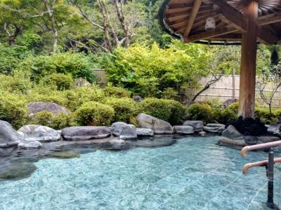 2019夏の箱根 吉池旅館 ①宿編