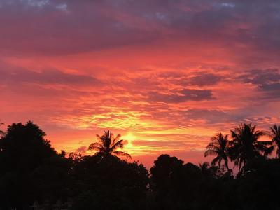 29日間タイの旅|最安値・家族でプーケット。ピピ島ツアーはこう安くする!