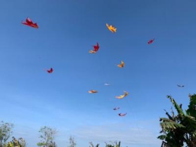 バリ島の迫力ある凧揚げ大会!