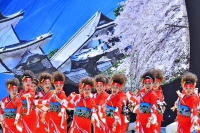 第21回にっぽんど真ん中祭り(2)