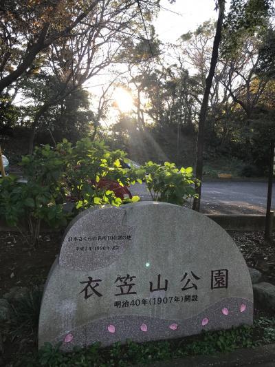 秋 紅葉を楽しむために 1日目 横須賀さわやか散歩13km