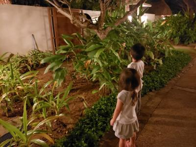 5歳3歳と行く初セブ島・クリムゾン&クエスト泊★1日目