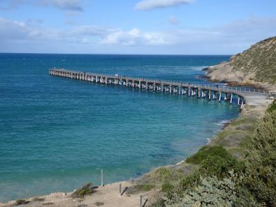 ヨーク半島(南オーストラリア州)の桟橋でアオリイカを釣ろう 2019年7月