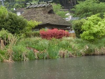 五月の九州旅行①大分県初訪問、由布院温泉は楽しかった