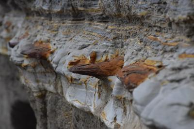 路線バスでゆく渡島半島西海岸の乙部・熊石~美しい奇岩の海岸線と鰊で栄えた町~(北海道)