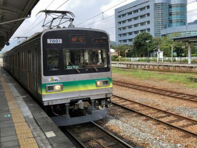 2019年8月首都圏鉄道落葉拾いの旅4(秩父鉄道)