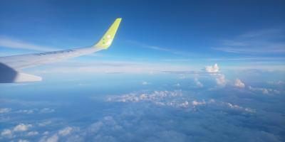 熊本ごはんと空の旅