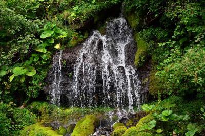 青春18きっぷで行く清里「吐竜の滝」ハイキング