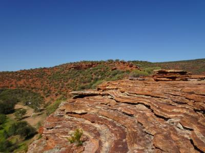 ストロマトライトを観に行こう!!西オーストラリア・レンタカーで1週間②カルバリ国立公園