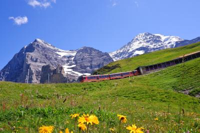 スイス3大明峰とロマンティック街道の旅 3.アイガーグレッチャーからクライネ・シャイデックへのハイキング