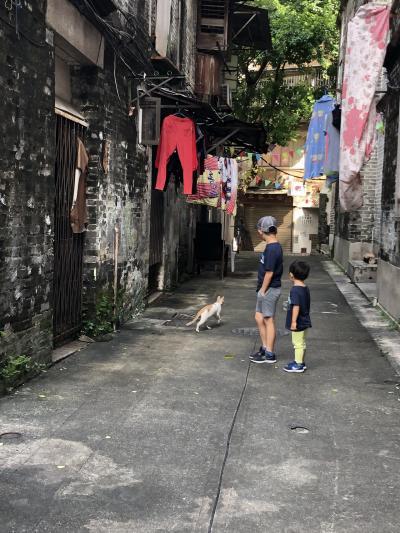 香港 マカオ 子連れ旅行 夏休み 2019 その② - スタジオシティ3泊と世界遺産編 -