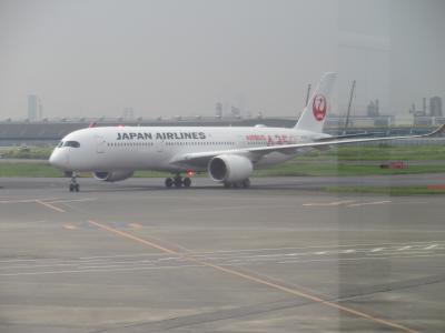 JGC修行その3 クアラルンプール(5/5)最後のフライトは新機材A350
