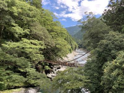 JALどこでもマイルで香川&徳島へ。祖谷峡のかずら橋と小便小僧へ