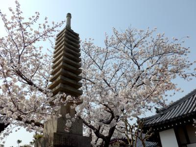 2019.4奈良出張,吉野,桜を満喫,そして名古屋へ2-桜の季節の大安寺,塔跡,帯解寺