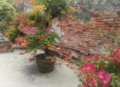 ローカル気分のバンコク近郊とアユタヤ旅行