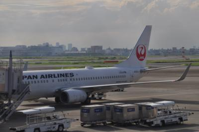 2019年8月首都圏鉄道落葉拾いの旅6(JAL便で帰途)