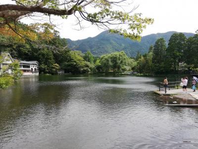 別府・湯布院~福岡市内ドライブ1