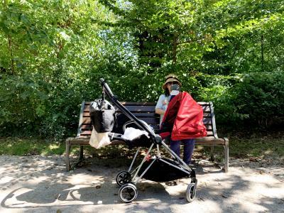5ヶ月の乳児を連れて、ストラスブールで1ヶ月の子育て旅行