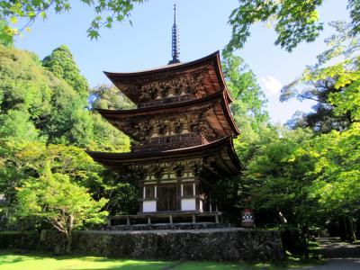 近江鉄道とタクシーで行く金剛輪寺と西明寺