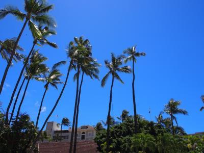 26年ぶり。4回目のハワイ。