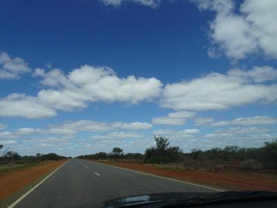 ストロマトライトを観に行こう!西オーストラリア・レンタカーで1週間⑤折り返しだよ!シャーク・ベイ~ジェラルトン~パース