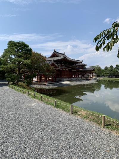 そうだ!'なちょ'と京都に行こう!2019夏 5 ~宇治『平等院』編~