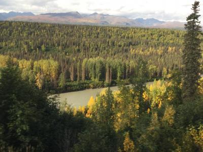 旅物語のJALチャター便でアラスカに(アラスカ鉄道)