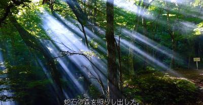 神秘の光を求めて、残暑に残る清涼キャンプ