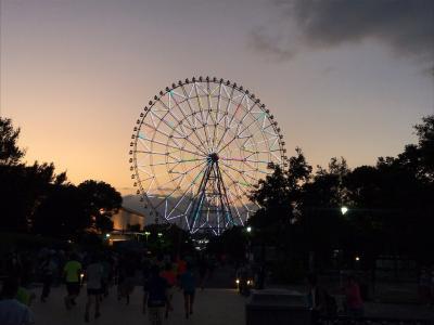 2019年9月 葛西臨海公園ナイトハーフマラソン
