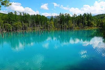 北海道で自然を満喫