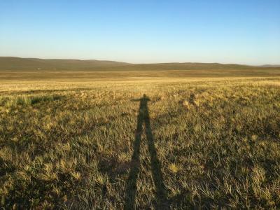 2019年 モンゴル旅行 大草原の地平線と星空満喫の旅
