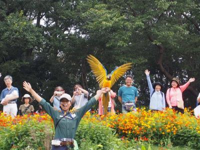 秋の里山ガーデンフェスタ2019秋へ開催初日に行ってきた!
