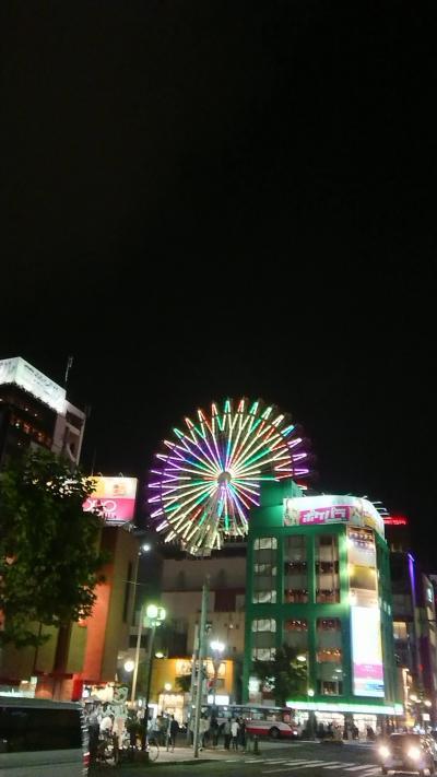 北海道再訪1