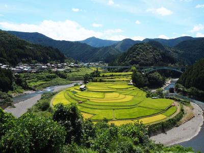 海と山が見たくて 和歌山・有田川と椿温泉 海椿葉山に泊まる