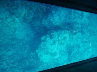 初めての石垣島+竹富島:2