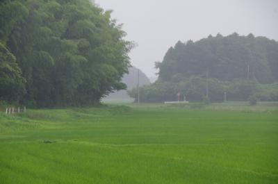 暴風雨の手繰川とユーカリが丘