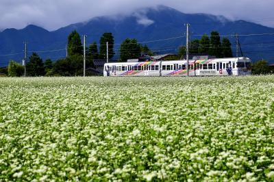 初秋の松本電鉄上高地線沿線に咲き広がる蕎麦の花の風景を探しに訪れてみた