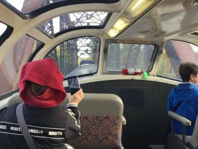 オーロラと動物と氷河(アラスカ鉄道)in Alaska