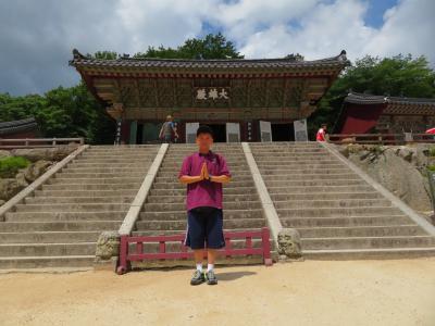 夏休み前半戦、JALで行く釜山3日間の旅
