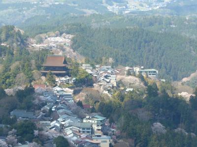 2019.4奈良出張,桜を満喫,そして名古屋へ2-吉野山の桜,吉野水分神社のしだれ桜,櫻本坊大護摩法要火渡りを途中まで見る,西澤屋のそば定食