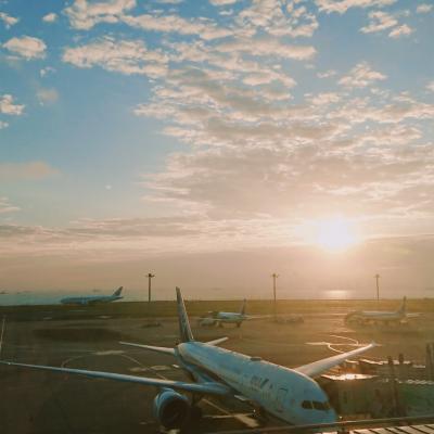 ***京の休日***まずは前泊羽田エクセルホテル東急で飛行機三昧