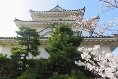 2018春、四国の百名城巡り(41/42):3月27日(14):丸亀城(2):本丸、市街の眺望、讃岐富士、二の丸