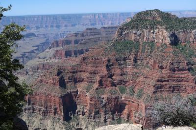 グランドサークル(2019)ユタ周遊 10 Grand Canyon NP North Rim に寄って帰国の途へ